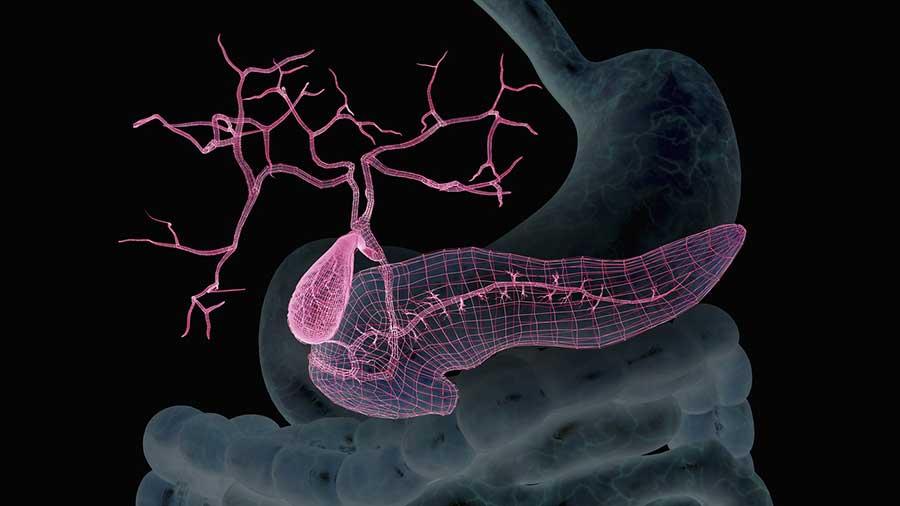 Artificial-pancreas-glucose