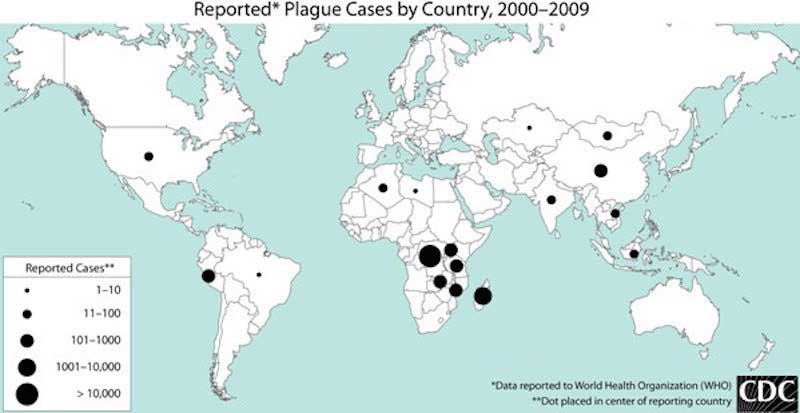 black-death-map-CDC