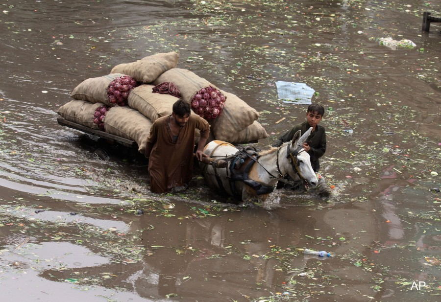 Pakistan suffered the consequences of heavy raining last July, as 838 died from the floodings. Photo: AP.