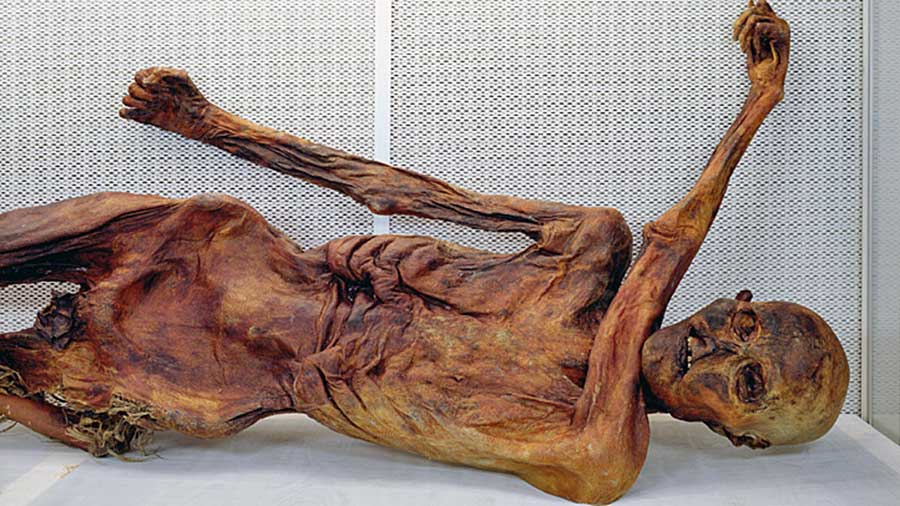 otzi-europe-mummy