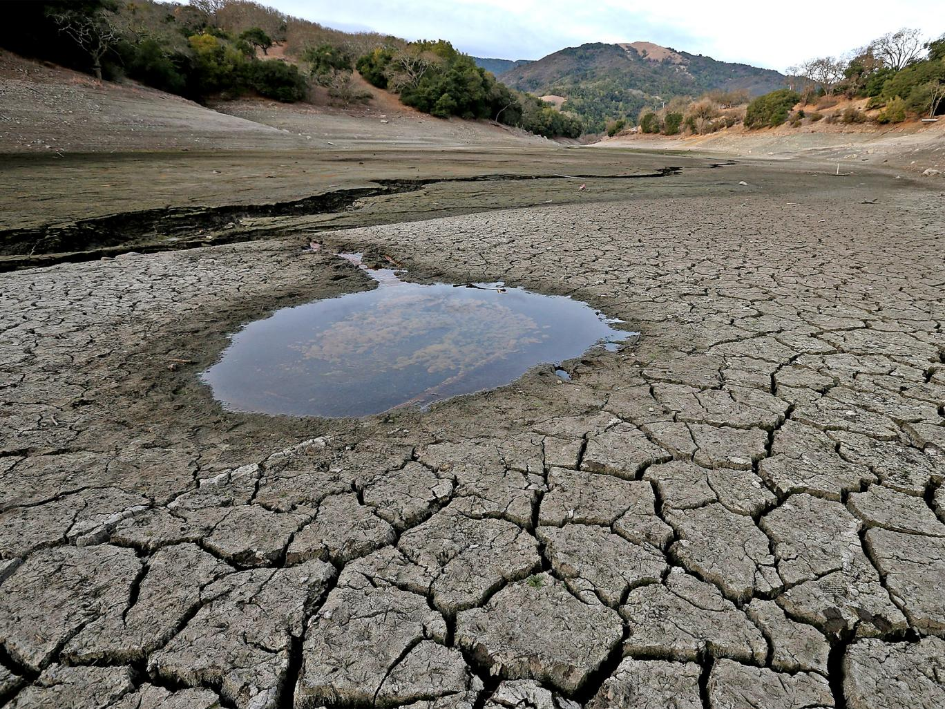 water shortages causes and effects As much as it's depressing, the effects of water scarcity amount to the number of causes it has aside from the human body needing water to.