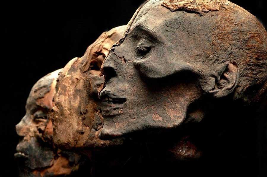 mummies-philadelphia