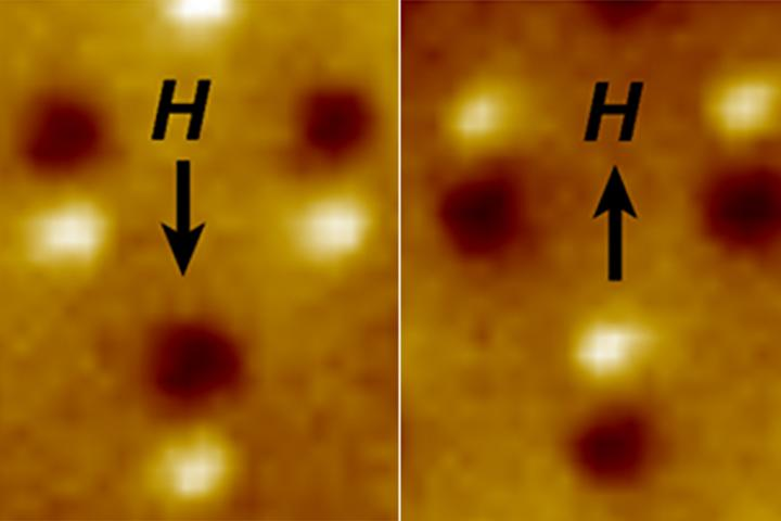 "Magnetic microscope image of three nanomagnetic computer bits. Each bit is a tiny bar magnet only 90 nanometers long. The microscope shows a bright spot at the ""North"" end and a dark spot at the ""South"" end of the magnet. The ""H"" arrow shows the direction of magnetic field applied to switch the direction of the magnets. Credit: EurekAlert/Jeongmin Hong and Jeffrey Bokor"