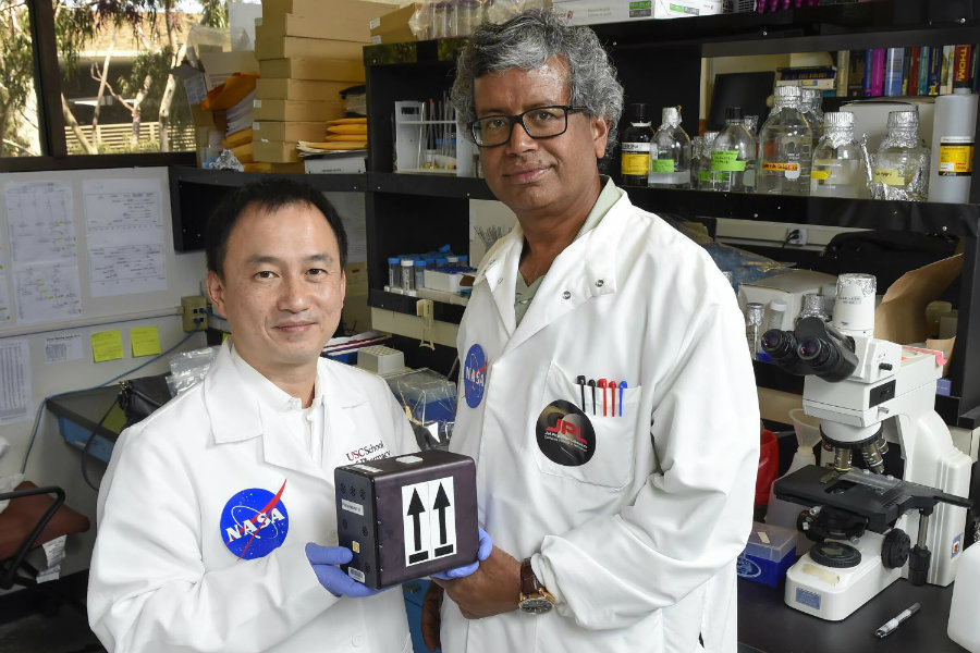 """Clay Wang, a professor at USC School of Pharmacy, and Kasthuri """"Venkat"""" Venkateswaran, senior research scientist at NASA's Jet Propulsion Laboratory, will be the first team in the world to launch fungi into space for drug discovery purposes. Credit: Gus Ruelas / Phys.org"""