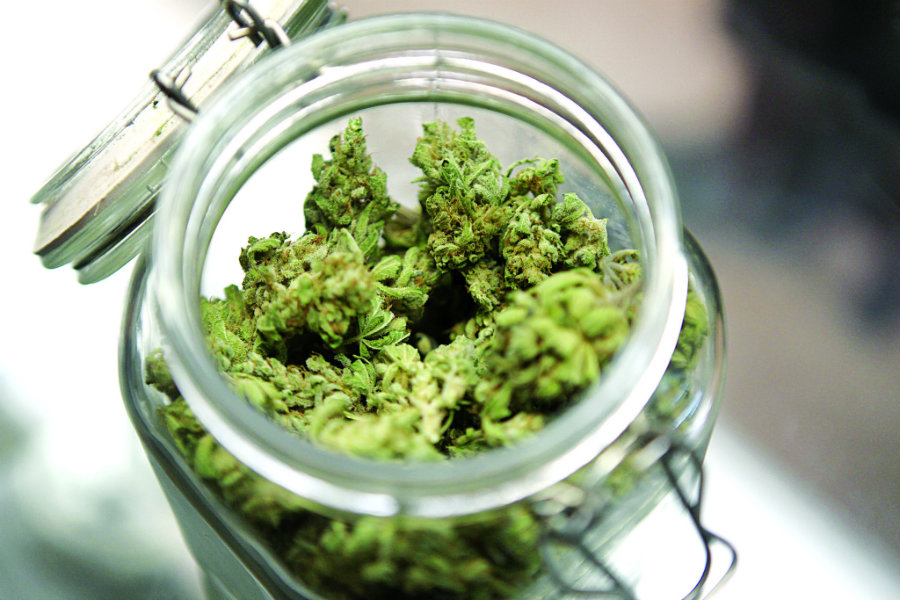 There a few proposals over Minnesota to approve a Medical Marijuana law to help Inflammatory Bowel Disease (IBD) patients so they can legally be treated with Medical Cannabis. Photo credit: Bored in Vancouver