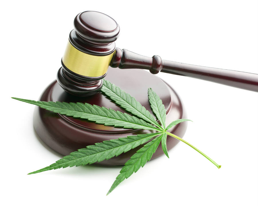 Medical marijuana dispensaries are among 24 states nationwide