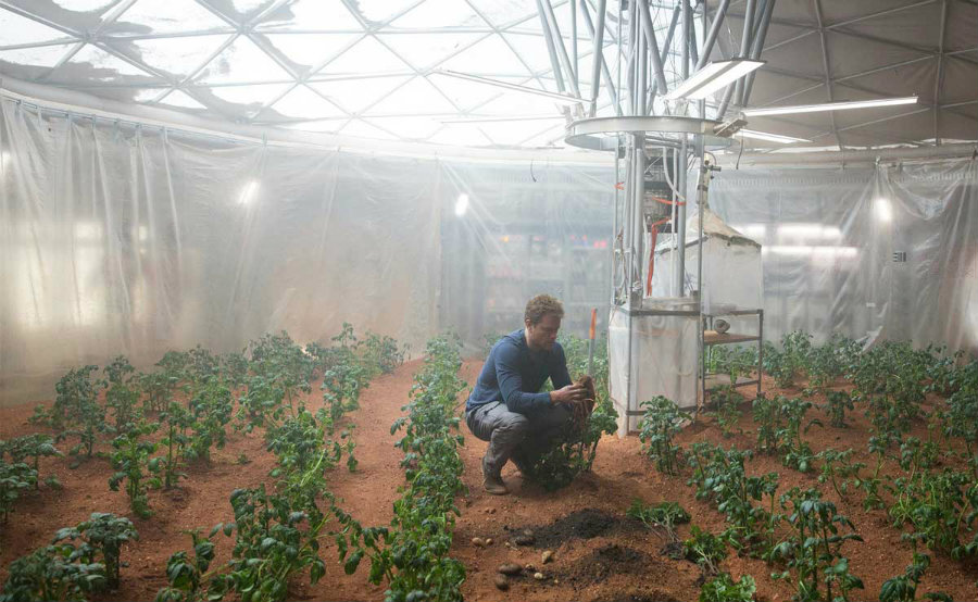 "In Ridley Scott's movie,  ""The Martian"", Mark Watney (Matt Damon), a botanist who was left behind on the planet, manages to survive for a hundred of days by successfully harvesting potatoes. Photo credit: Modern Farmer"
