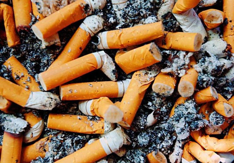 Cigarette butts represent a threat to the environment considering how often people tend to toss them in the grass, most frequently in parks, such as the East Bay regional parks. Credit: ABC News