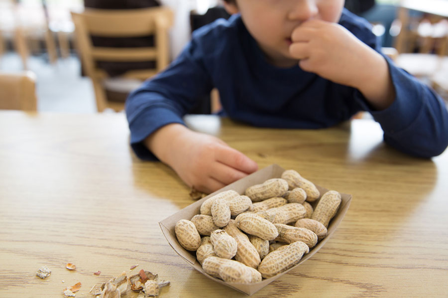 Low-Income-Families-and-Food-Allergies