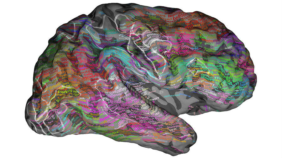 According to NPR, the map developed by researchers shows that words are represented in different regions throughout the brain's outer layer. The study was published in the journal Nature, earlier this week. Credit: NPR