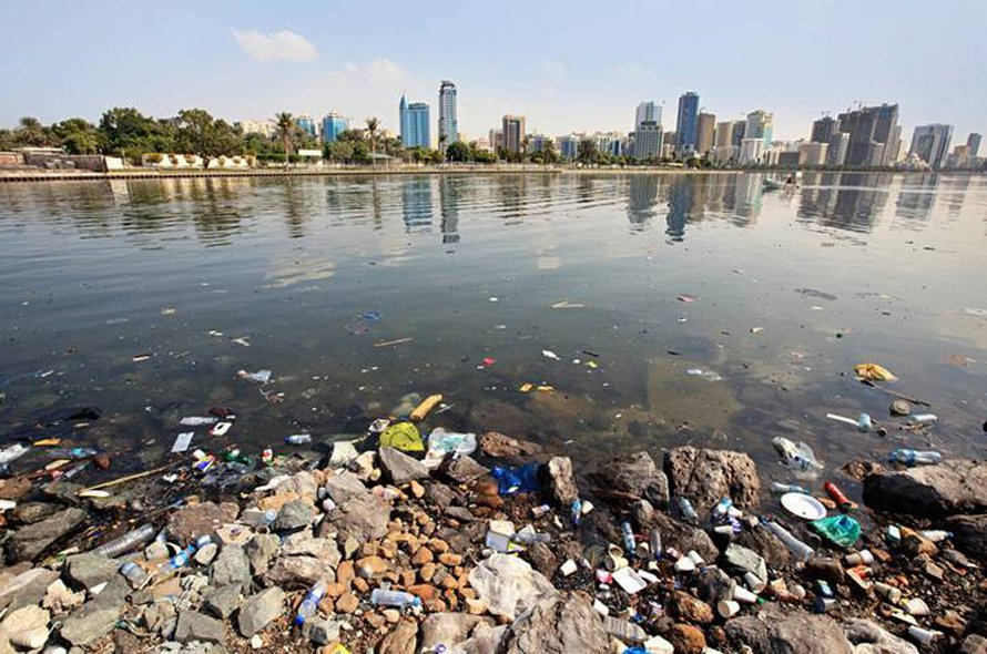 UAE deals with environmental issues