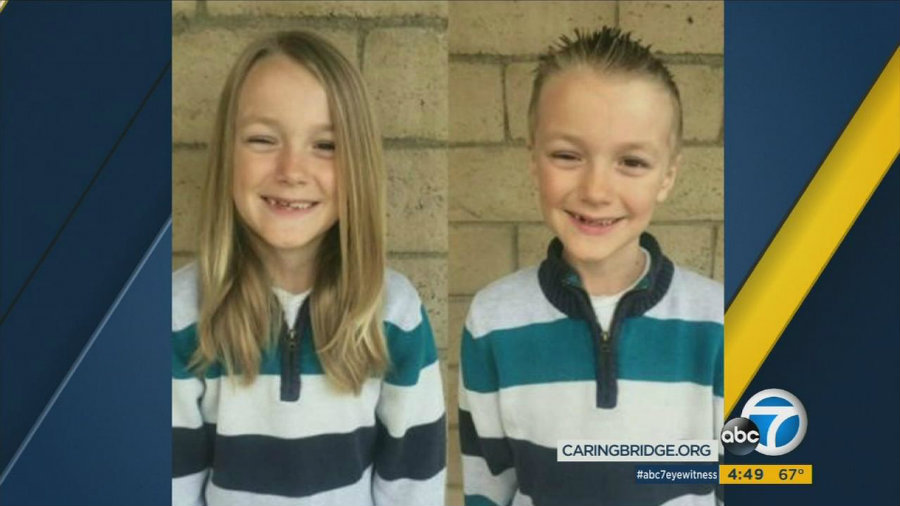 Vinny Desautels had been growing his hair out for two years to donate to children with cancer. Photo credit: ABC 7