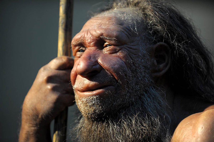 Climate change may have contributed to Neanderthals extiction