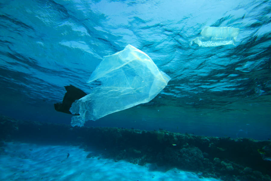 About 20 percent of the plastic in the oceans comes from ships or offshore platform