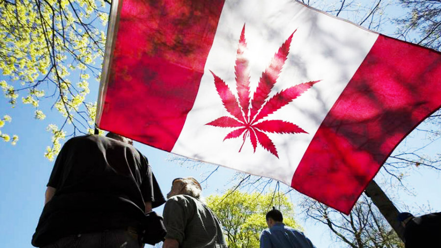By next year, Canadians may be able to buy cannabis from every pharmacy and liquor store if a motion is passed. Photo credit: Cannabis Culture