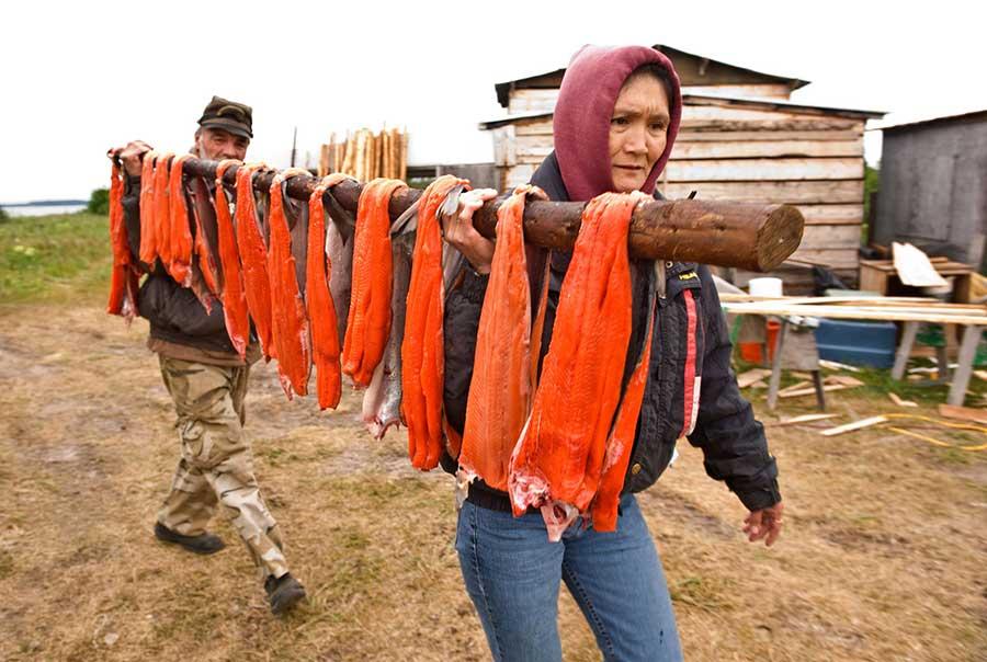 Salmon-indigenous-consume