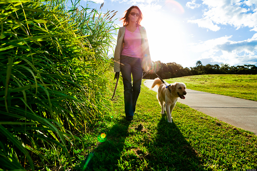 Walking-for-10-minutes-improve-vascular-health