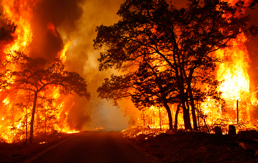 Wildfires-getting-worse-due-to-climate-change