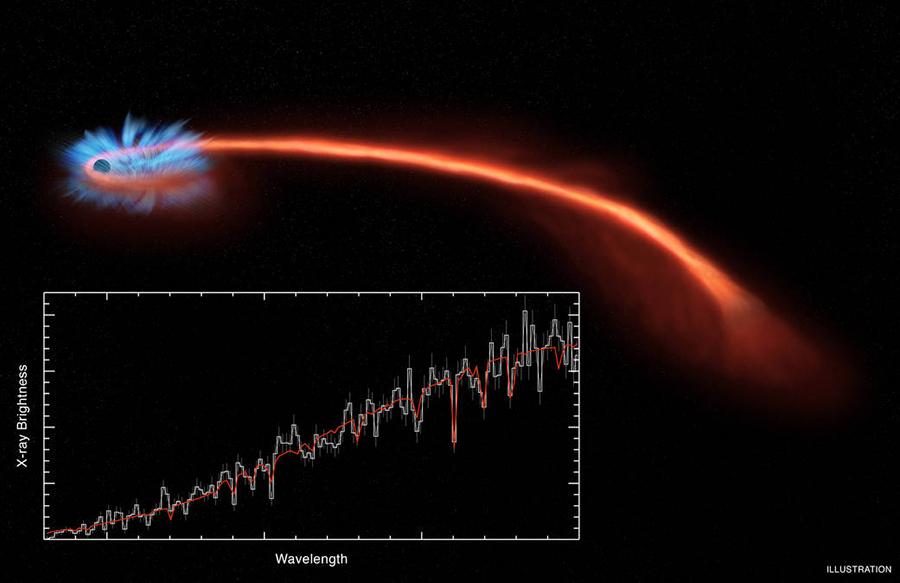 NASA-Tidal-Disruption