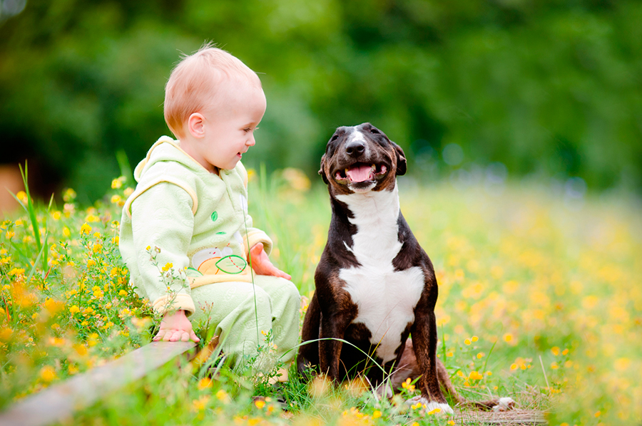 Dogs-reduce-risk-of-asthma