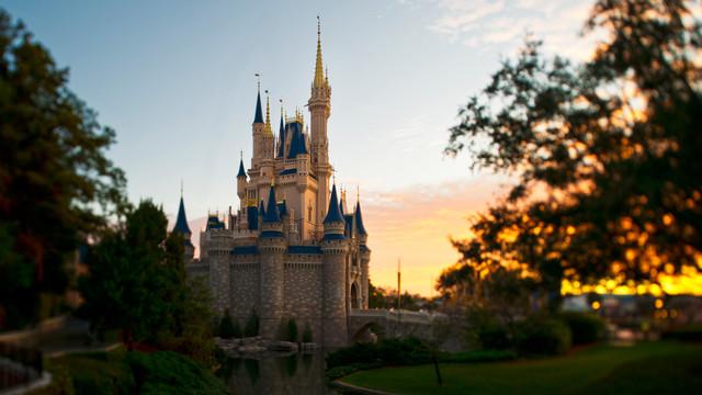 Photo: Disneyworld