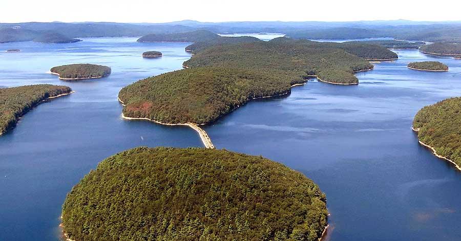 Mt-Zion-island-rattlesnake