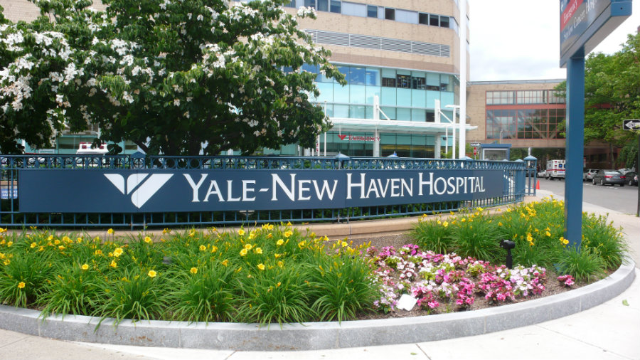 A class lawsuit against Yale-New Haven Hospital has been filed on recently for supposedly getting the wrong operation and removing the wrong part of the patient's body. Photo credit: Signlite