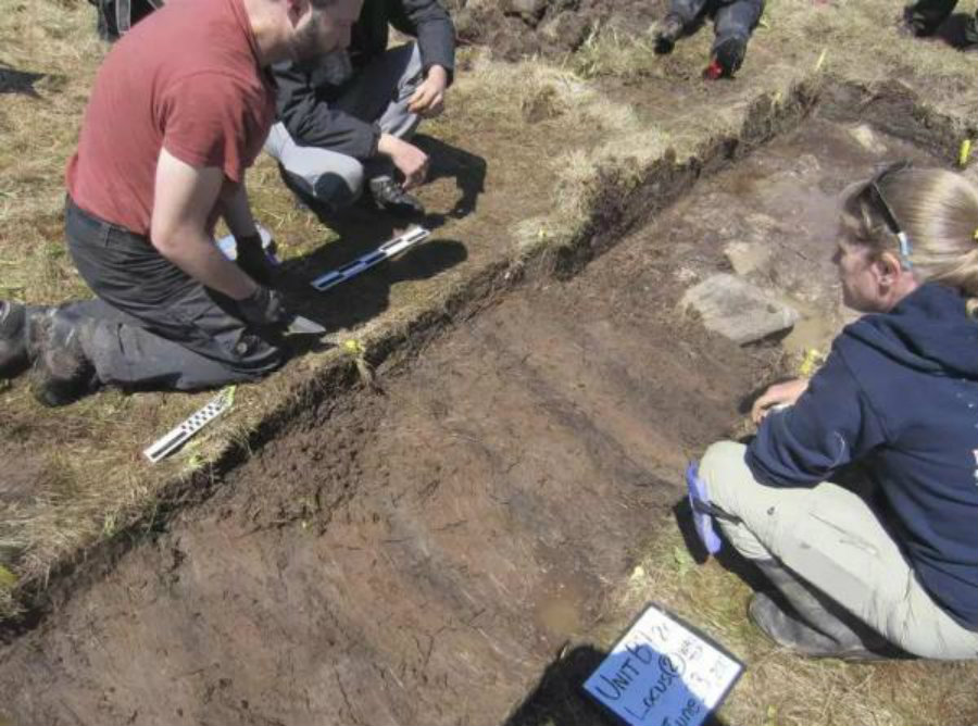 Past June, archeologists had found in Point Rosee, located in Newfoundland, traces of what seems to be a Viking hearth surrounded by a wall. Photo credit: Indian Country Today Media Network