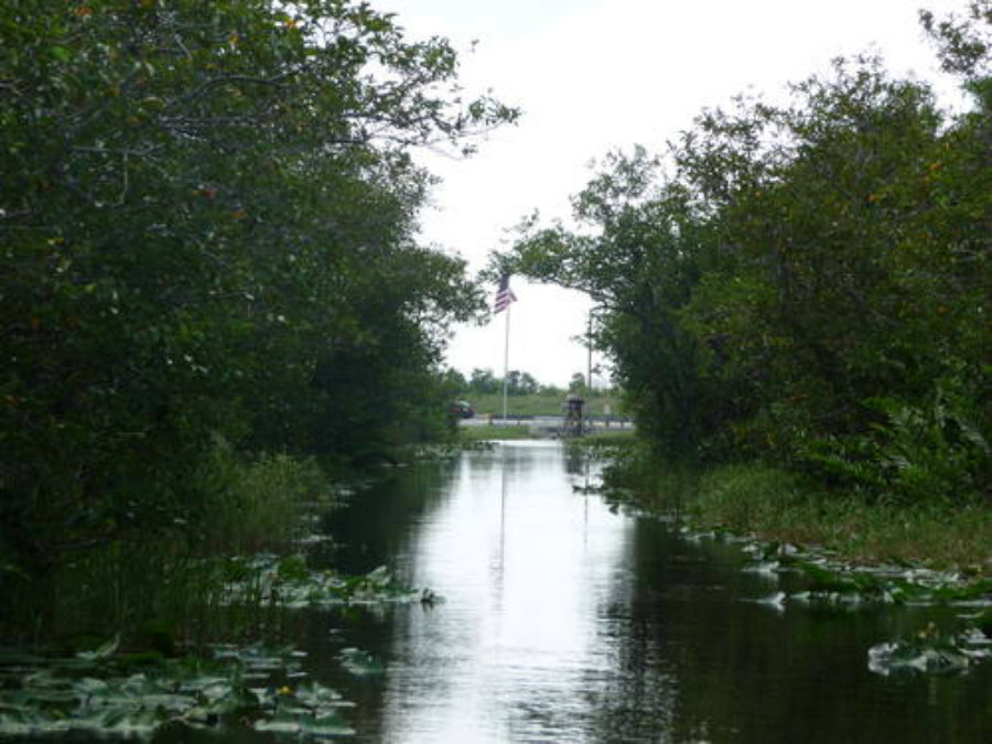 World Heritage Site in danger: Everglades National Park, United States of America. Credit: © Anne-Sophie Le Bars / UNESCO