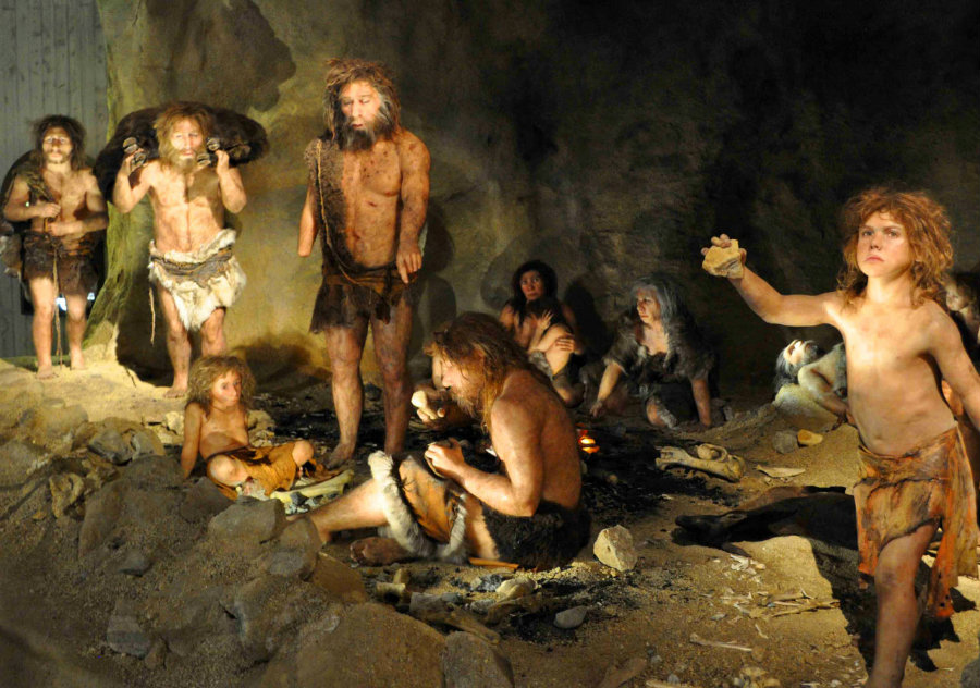 A new study suggests that Neanderthals in Europe could have been infected with several diseases carried out by the modern human kind, the Homo sapiens from Africa. Photo credit: