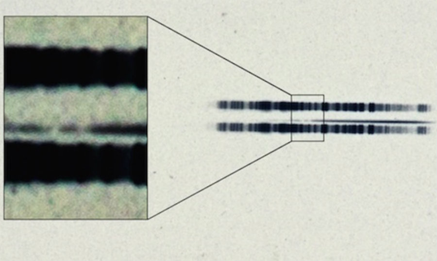 The 1917 photographic plate spectrum of van Maanen's star from the Carnegie Observatories' archive was made public this week. Scientists are calling it the earliest known evidence of a polluted white dwarf star. Credit: Carnegie Institution for Science / Christian Science Monitor