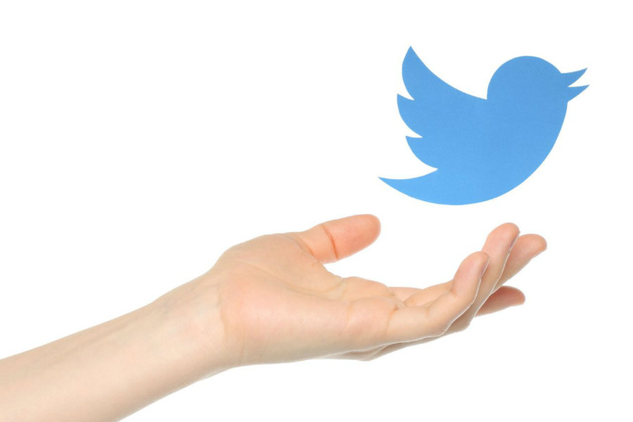 Twitter has announced the new addition to their safety center tool. Photo credit: Shutterstock / Vox