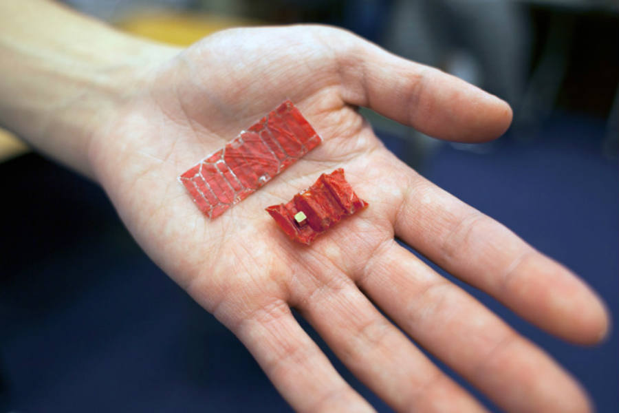 As seen in the picture above, MIT Microsurgeon folded and unfolded gives the impression of an origami robot. Image Credit: Laughing Squid