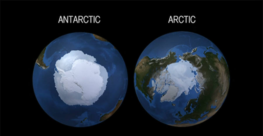 Difference between Arctic and Antarctic sea ice change explained