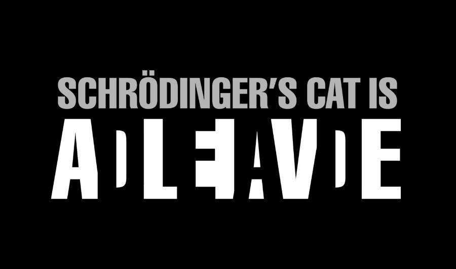 "In the Schrödinger's cat experiment, the cat is both alive and dead at the same time, at that ""double state"" is a state itself for quantum mechanics"