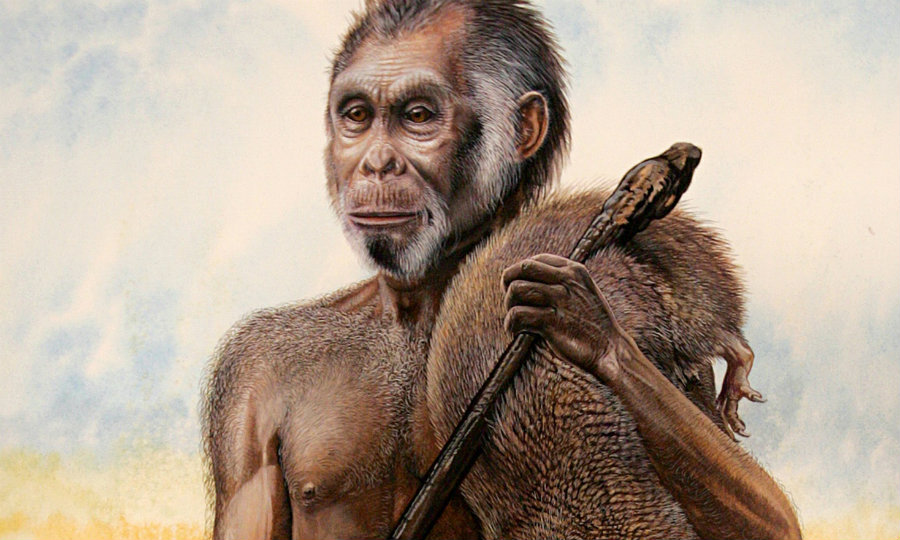 Remains of a distant about the Homo sapiens were found in Indonesia's Isle of Flores. Researchers believe that their small size was due island dwarfism. Photo credit: Peter Schouten / National Geographic / The Guardian