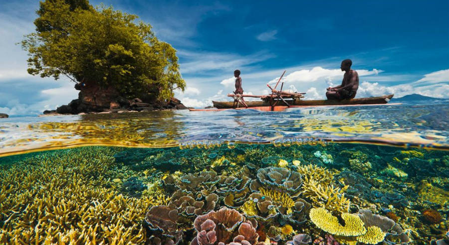 Not all the reefs analyzed by the team did exceptionally good or bad; there were ones such as the Great Barrier Reef off Australia, the world's biggest, that performed within its expectations, as reported by Reuters. Image Credit: National Geographic