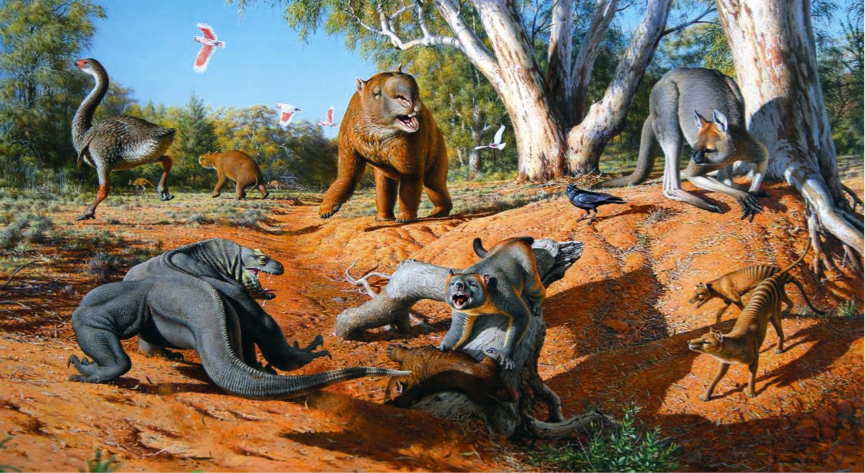 People opposing this idea say that the time frame is too short for our ancestors to drive big mammals to extinction without any help. Moreover, they had been living with the creatures for 3.000 years without impacting the number of other species' populations. Image Credit: Unimelb Blog
