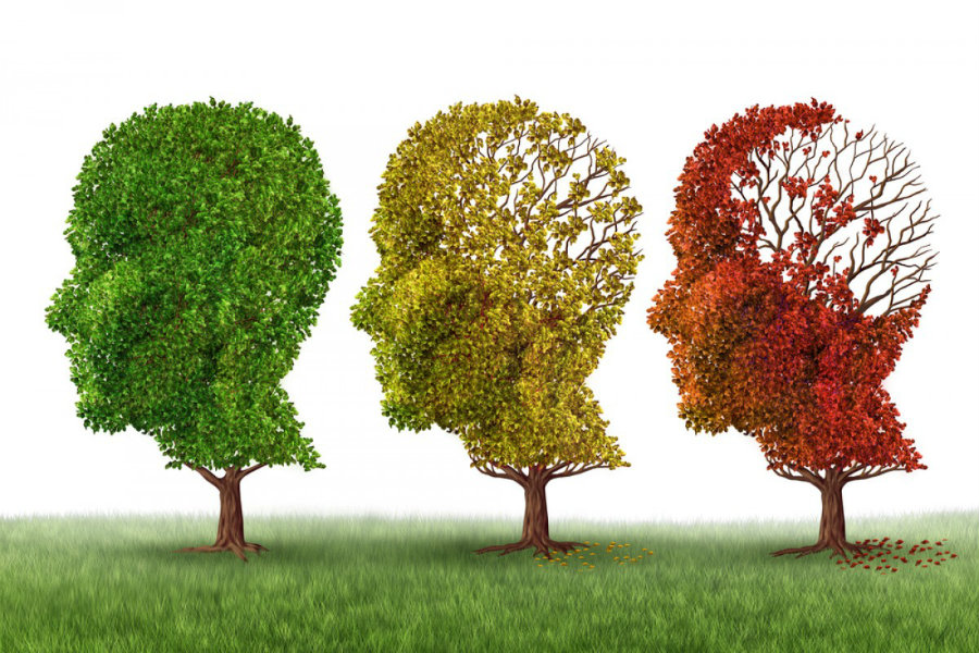 The researchers stated that there was few data on the pathology of cerebrovascular disease and cognition available. Image Credit: NjoyVision
