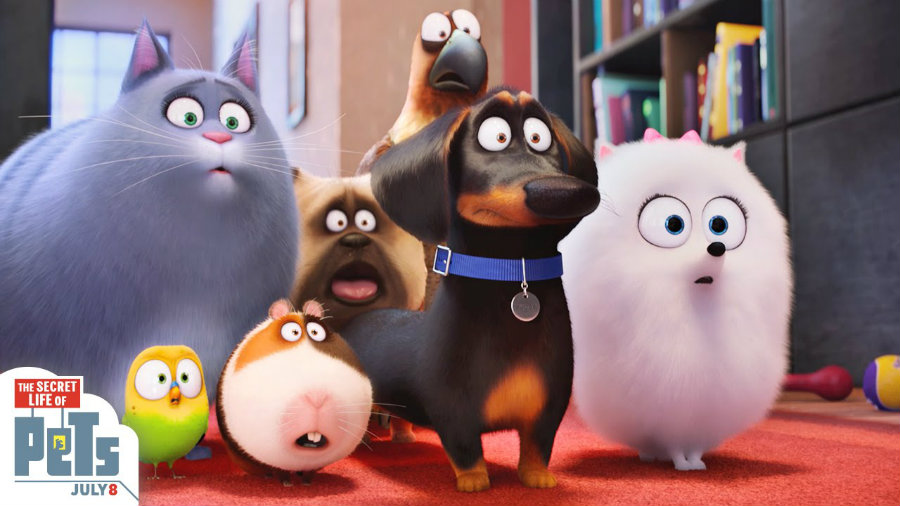 Now pet owners will finally know what their pets do when there is nobody home, after watching Universal Pictures' The Secret Life of Pets, a movie that follows a similar premise to Toy Story. Photo credit: Illumination