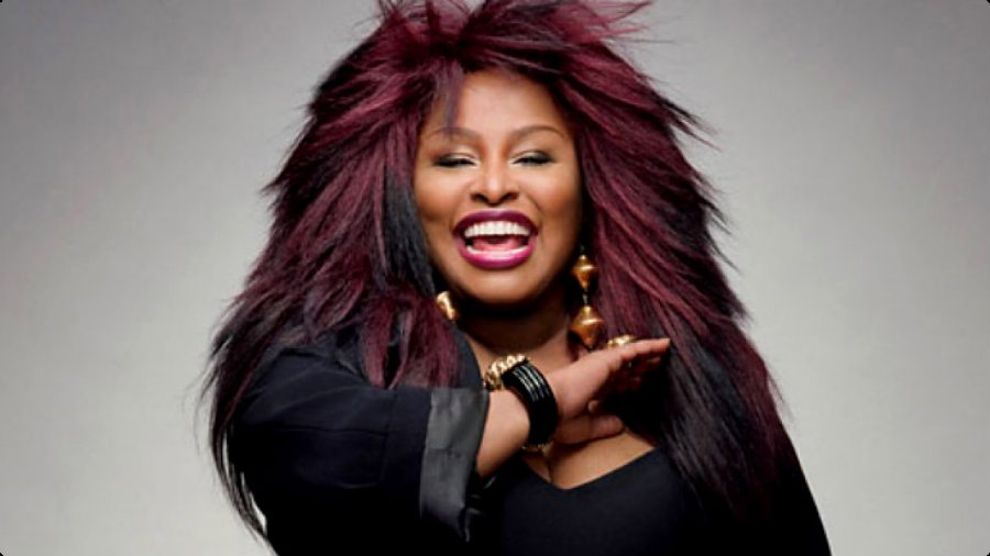 Yvette Marie Stevens, better known as Chaka Khan, canceled the rest of the shows she had scheduled for this year and entered rehab. Photo credit: Metamansion.com