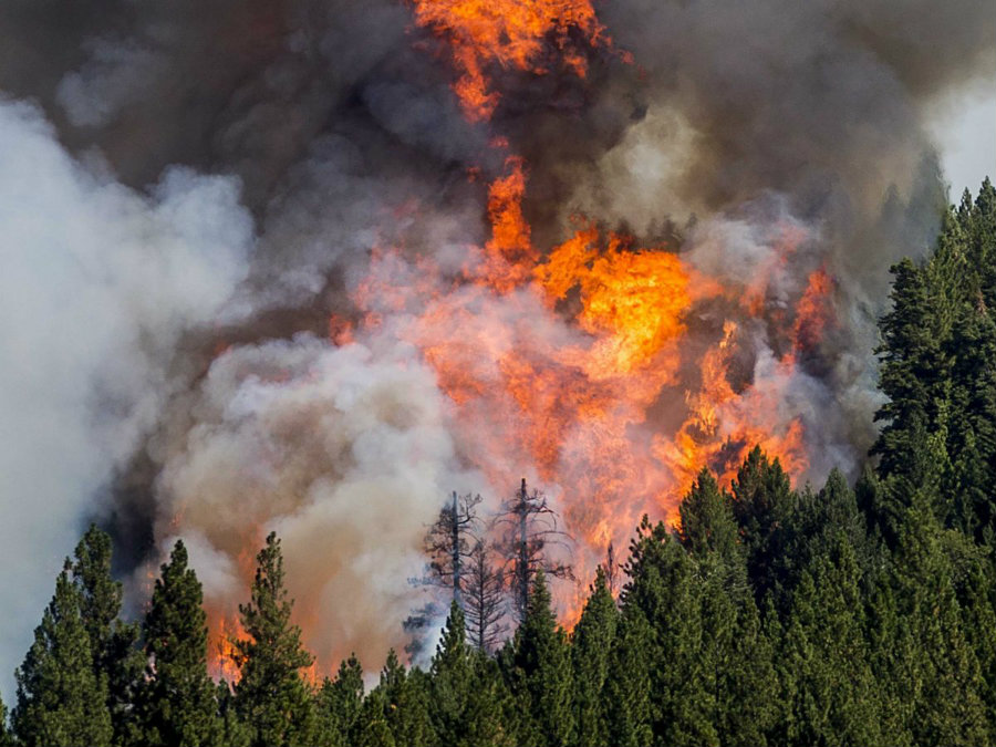 More than 3,000 firefighters, 250 fire engines, and 30 aircraft worked to try to reduce the flames. Image Credit: Business Insider
