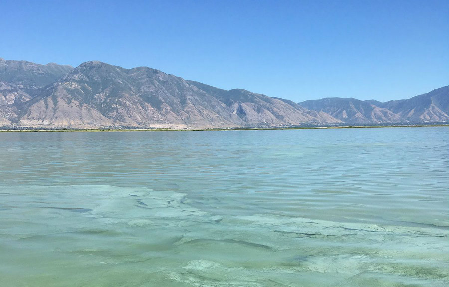 On Sunday the Utah Department of Environmental Quality stated that the Jordan River and related canals are not safe as a source of water or recreation because cyanobacteria were found in the water. Photo credit: Fox 13 Now